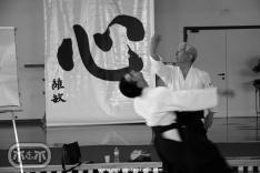 Maruyama Sensei - advanced technique