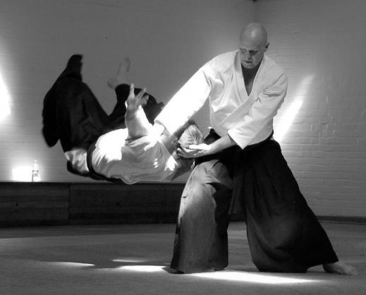 Training Notes Ukemi Fundamental Principles Aikido Warrior Dojo