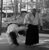 Yonklyo - Peter Kelly Sensei