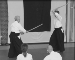 Bokken practice - partnered.