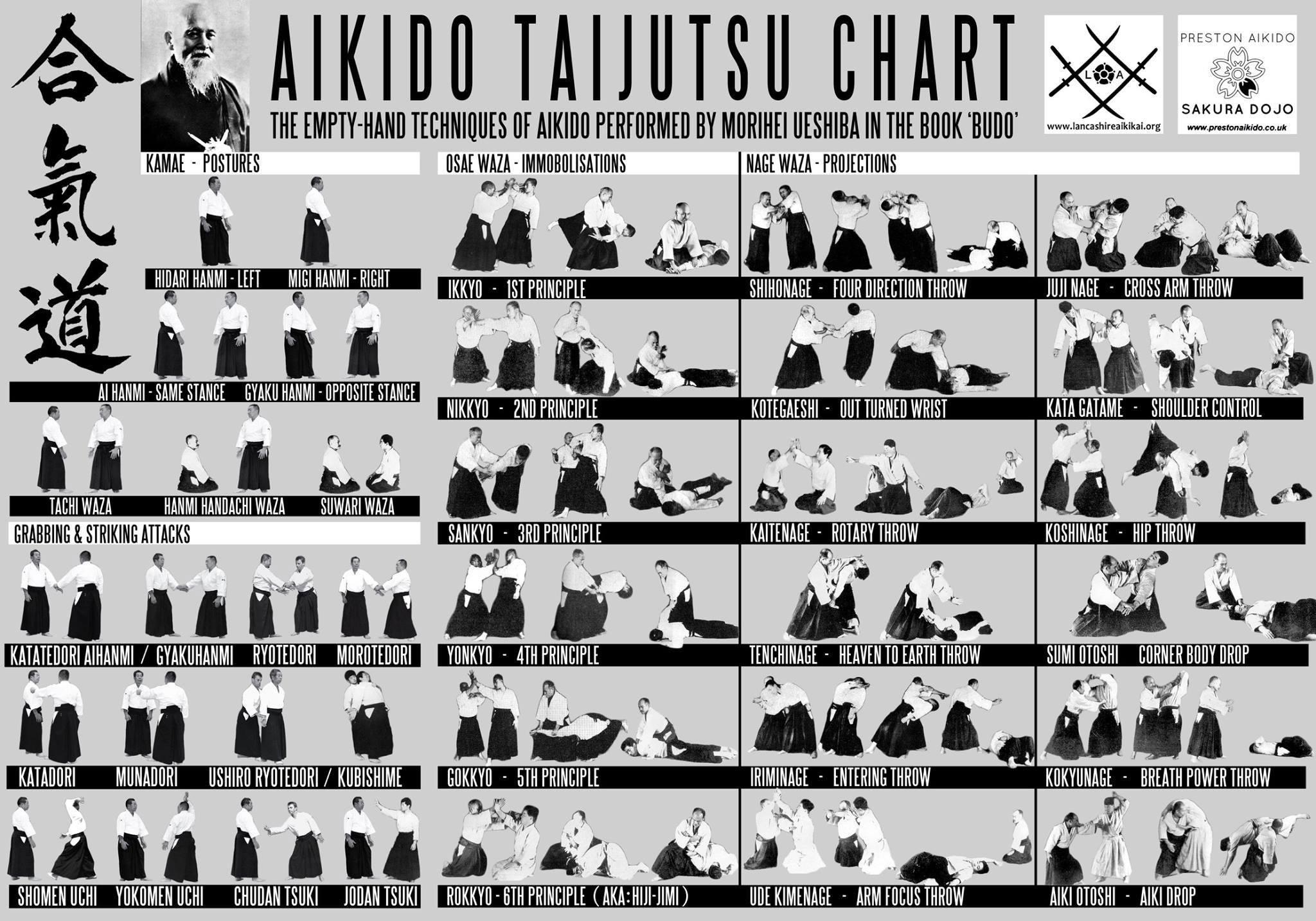 Budo Manual Chart Of Techniques Aikido Warrior Dojo